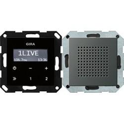 Radio pt. RDS Gira E22 naturalny stalowy