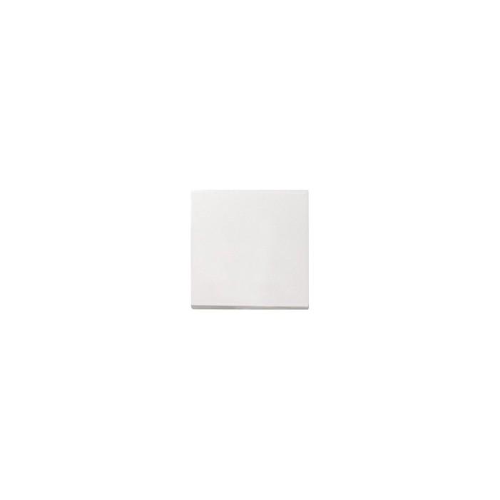 Ściemniacz niskonapięciowy 20-500VA (wł. przycisk.) s.2000 biały System 55 GIRA